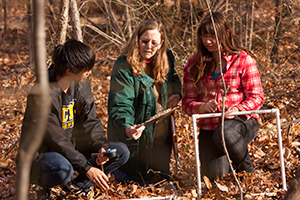 Janet Morrison conducts field research with undergraduates.