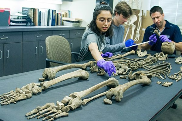 TCNJ adds anthropology major for fall 2021
