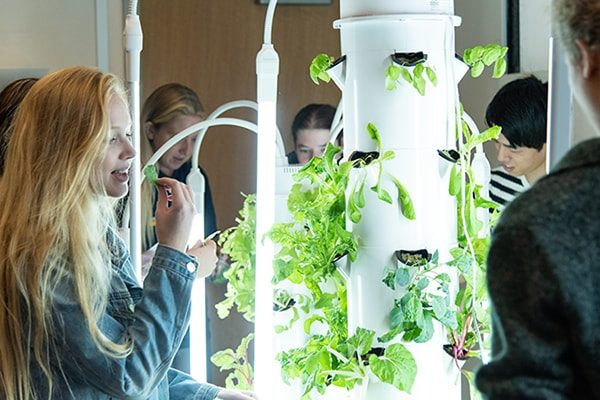 This intro to environmental sustainability is not your garden-variety college course